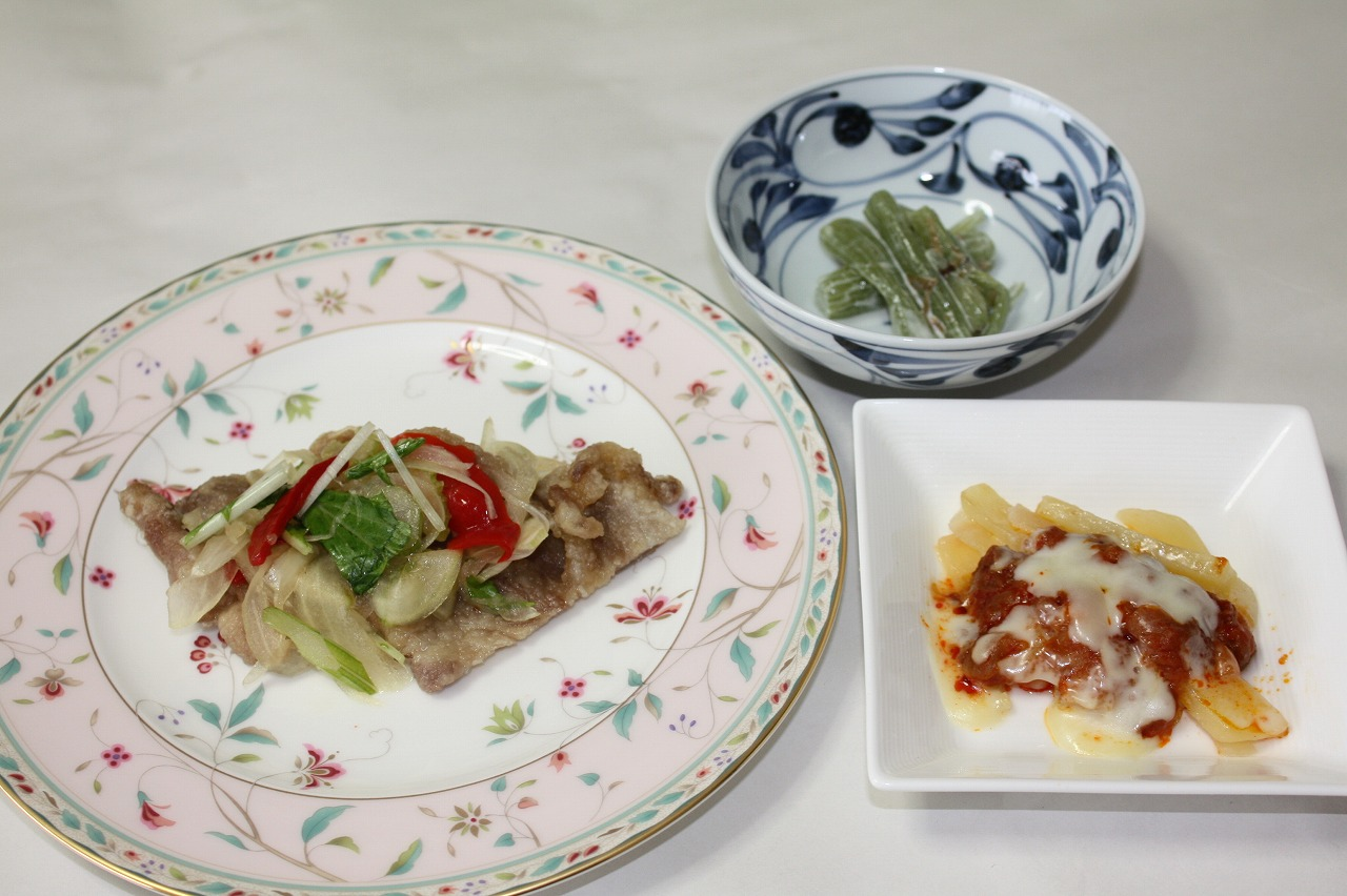 カロリーたんぱく調整食(定期コース10食)