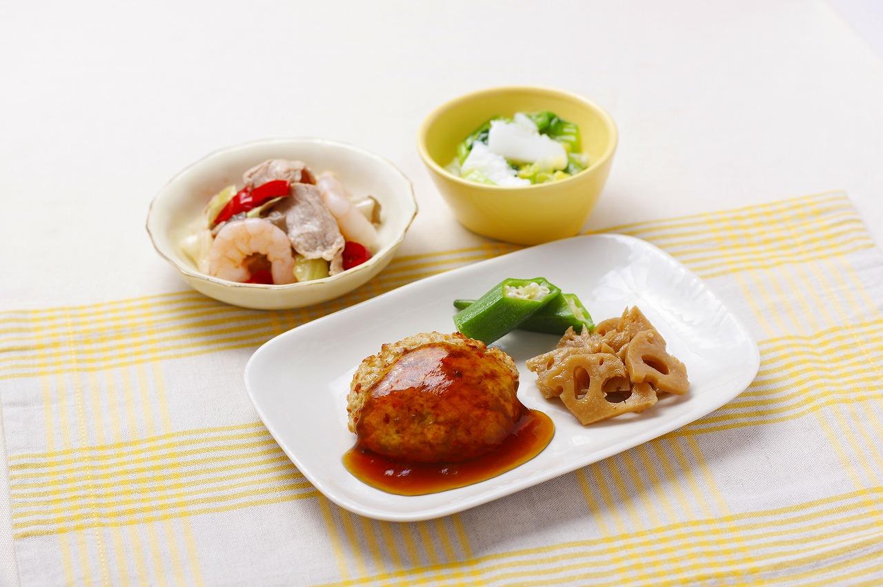 (メニューの一例)豆腐ハンバーグ、豚肉と野菜の炒め物、いかと青梗菜の旨煮、れんこんの金平。身体に優しい植物性たんぱく質の豆腐をおいしく活かしたお料理です。薄味のあんをたっぷりかけて召し上がれ。